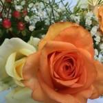 Zahl des Tages: 69 Prozent der Brautpaare in Deutschland haben ihre Hochzeit überwiegend selbst finanziert